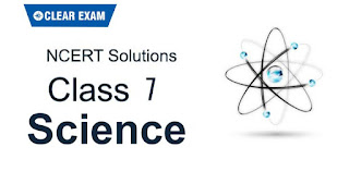 NCERT Solutions Class 7 Science