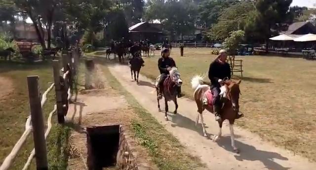 Wisata Edukasi DE RANCH Lembang Bandung