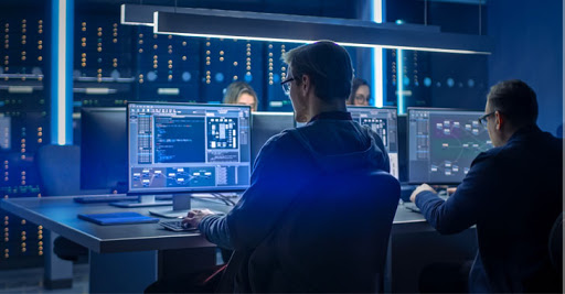What are the different roles within cybersecurity?