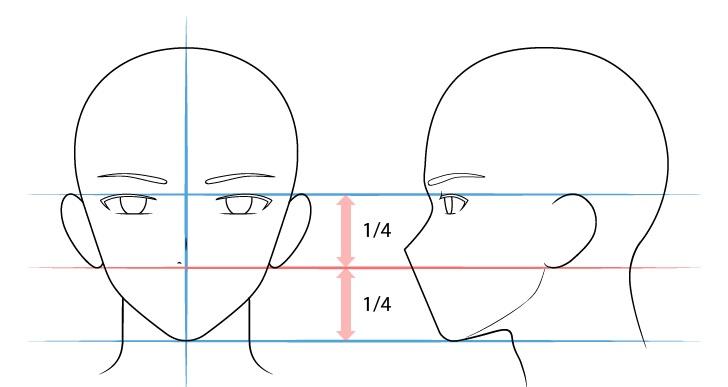 Langkah 4 - Menggambar Hidung