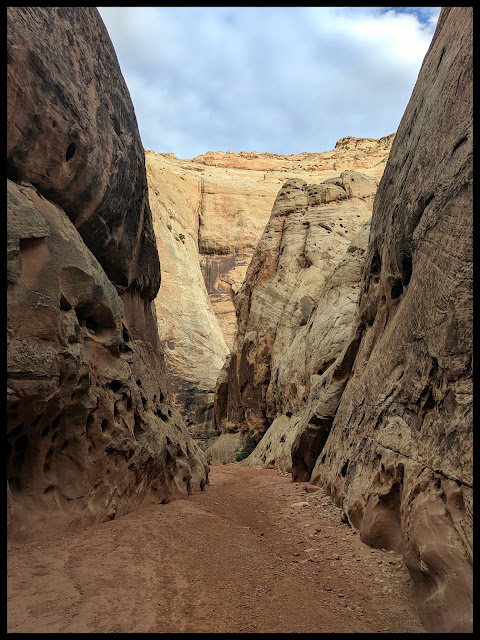 The Narrows Grand Wash Capitol Reef Utah