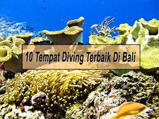 Inilah 10 Tempat Diving Terbaik Di Bali