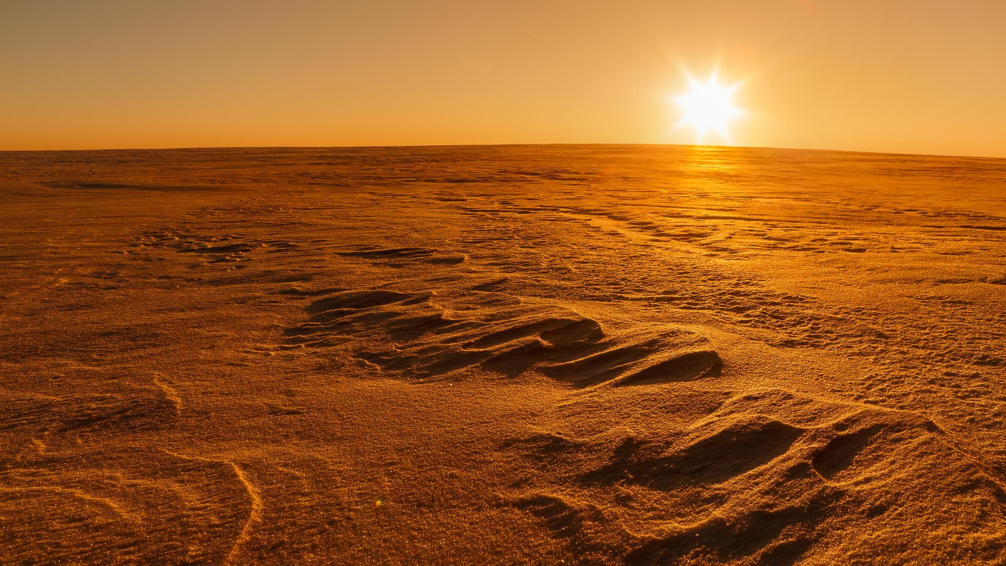 Mars' Subsurface Has Ingredients To Support Life
