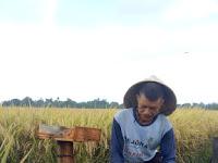 kisah inspiratif Bripka Hamzah, SH, anggota POLRI unit K-9 Satwa Polda Sulsel yang nyambi sebagai petani.