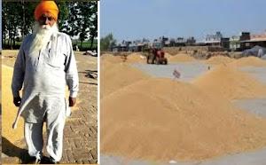 पंजाब के किसानों के खाते में लगभग 8,180 करोड़ रुपये सीधे स्थानांतरित किये गए wheat price in punjab 2021 today