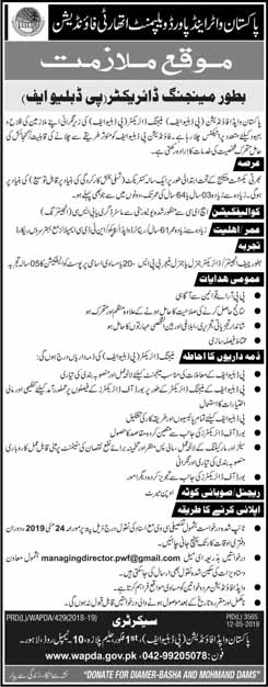 Managing Director required in WAPDA 2019