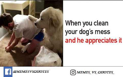 Clean Your Dog's Mess