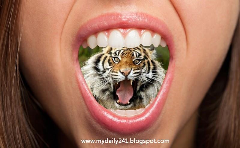 Mulutmu dan Sosial Mediamu adalah Harimaumu