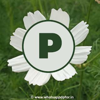 p-name-ki-photo