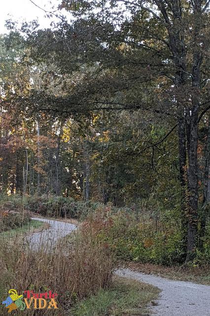 Mammoth Cave Railroad Hike & Bike Trail