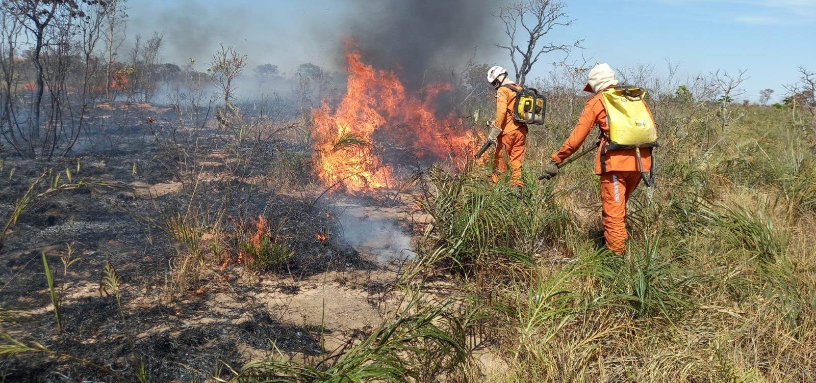 Bombeiros seguem no combate a incêndio florestal em Formosa do Rio Preto