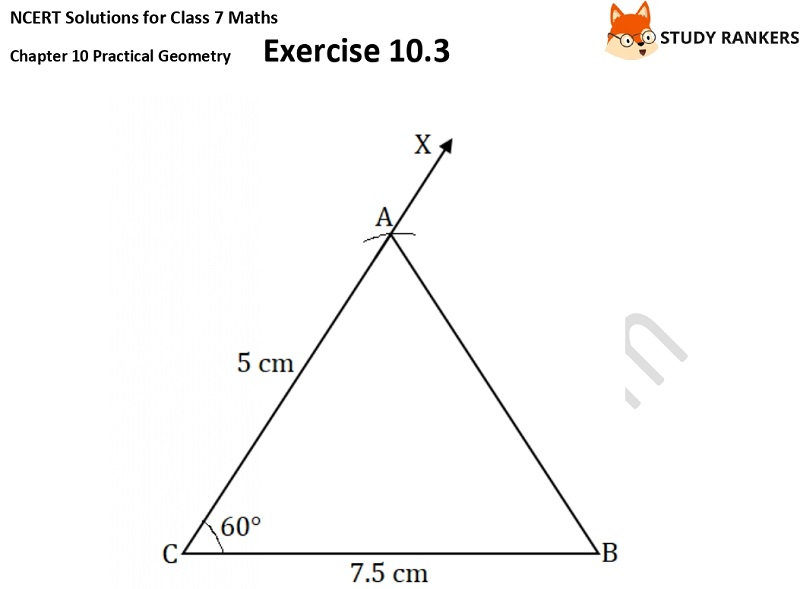 NCERT Solutions for Class 7 Maths Ch 10 Practical Geometry Exercise 10.3 3