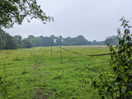 The fencing has been moved alongside the public right of way