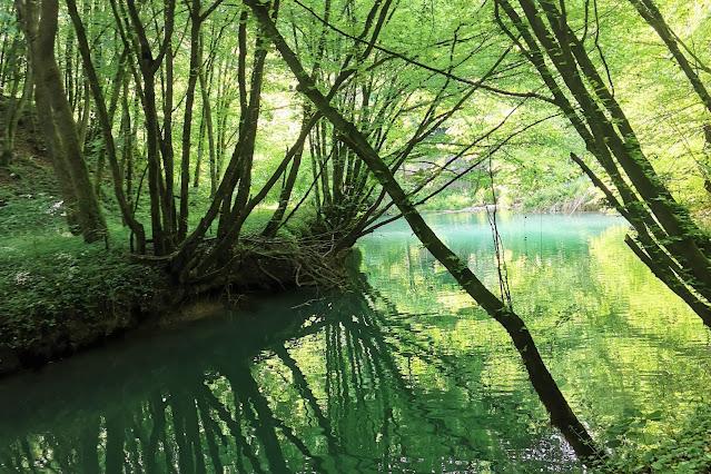 Pot ob reki Temenici v Prečni