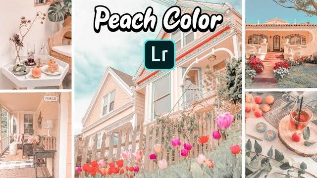 Peach Color Presets Free Download