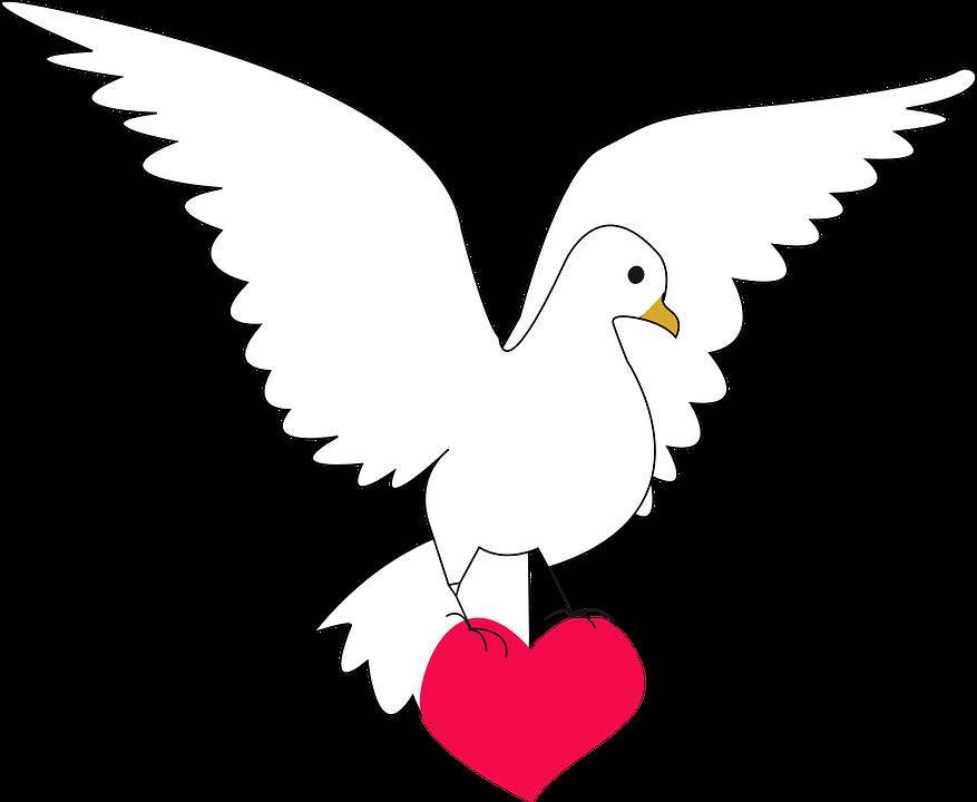 Mi Grado primero: Comprensión de lectura: Pepa la paloma