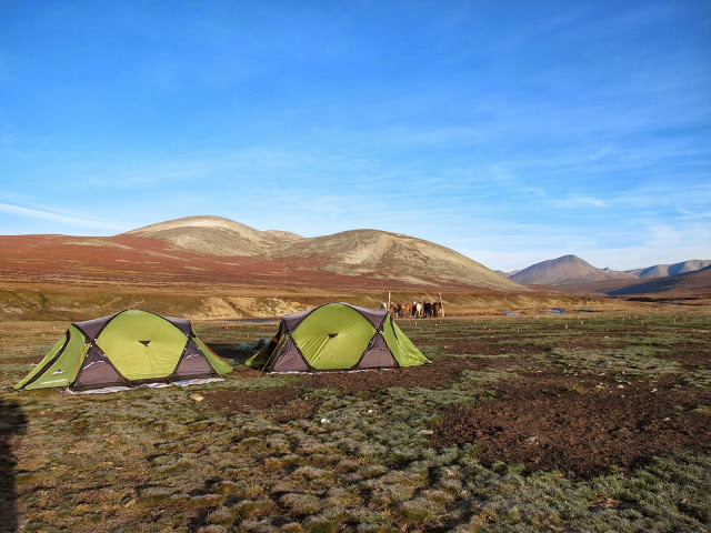 Our tent camp for the night, taiga landscapes, Khovsgol Aimag, northern Mongolia