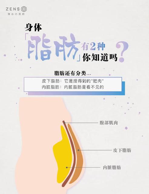 皮下脂肪和内脏脂肪 ZensoDiet