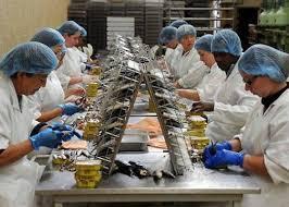مطلوب تشغيل 50 مستخدمين لفائدة شركة لتعليب السمك براتب 3000 درهم شهريا