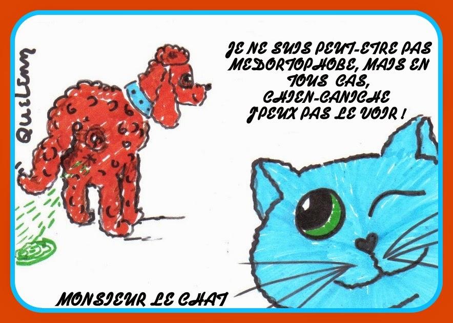 dessin de chat, caniche, médortophobe