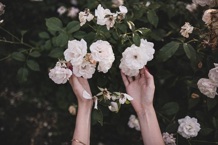 zdjęcie kwiatów i rąk