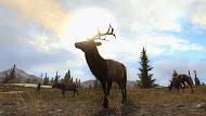 Cabelas-Big-Game-Hunter-Pro-Hunts-shot3