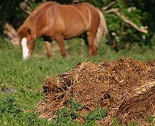 Analysis of Organic Fertilizers