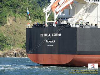 Betula Arrow