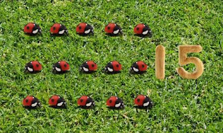 15 ladybugs are counted in the garden. Sesame Street Count On Elmo