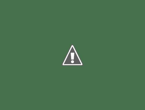 Source https://www.sciencelearn.org.nz/images/3964-te-kahui-o-matariki