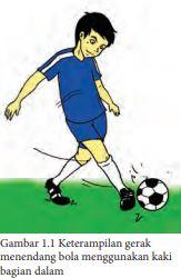 Fungsi Menendang Bola Dengan Kaki Bagian Dalam Adalah : fungsi, menendang, dengan, bagian, dalam, adalah, Analisis, Keterampilan, Gerak, Menendang