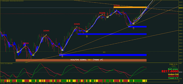 THV Cobra System with Price Action