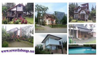 Rekomendasi Villa Istana Bunga Untuk Keluarga
