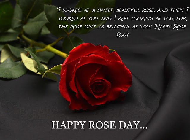 Rose day image with love message