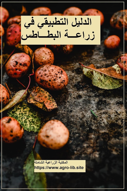 كتاب : الدليل التطبيقي في زراعة البطاطس