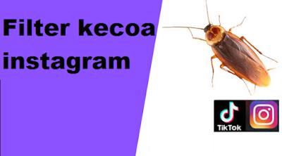 Filter kecoa instagram : Cara Mudah mendapatkan Filter kecoa di instagram