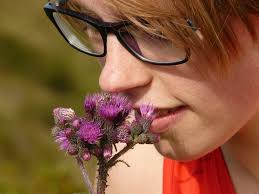 penyebab bau badan pada remaja