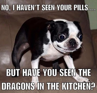 Dog Humor : Has Anyone Seen My Pills?