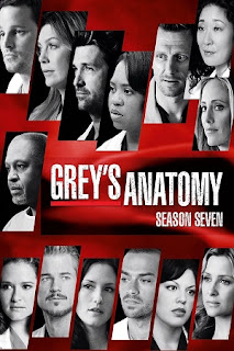 Grey's Anatomy S07 All Episode [Season 7] Complete Download 480p