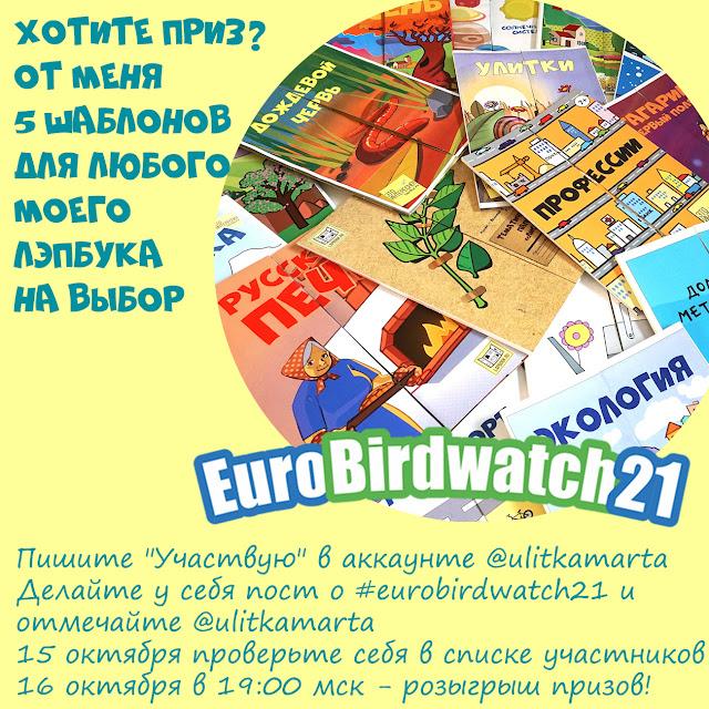 Призы для учета птиц Евробердвотч