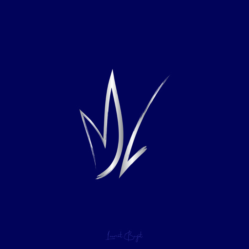 signature luxe métal ml