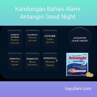 Kandungan Antangin Good Night