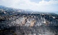 Μήνυση κατέθεσε η χήρα Φύτρου για τη φονική πυρκαγιά στην Αττική
