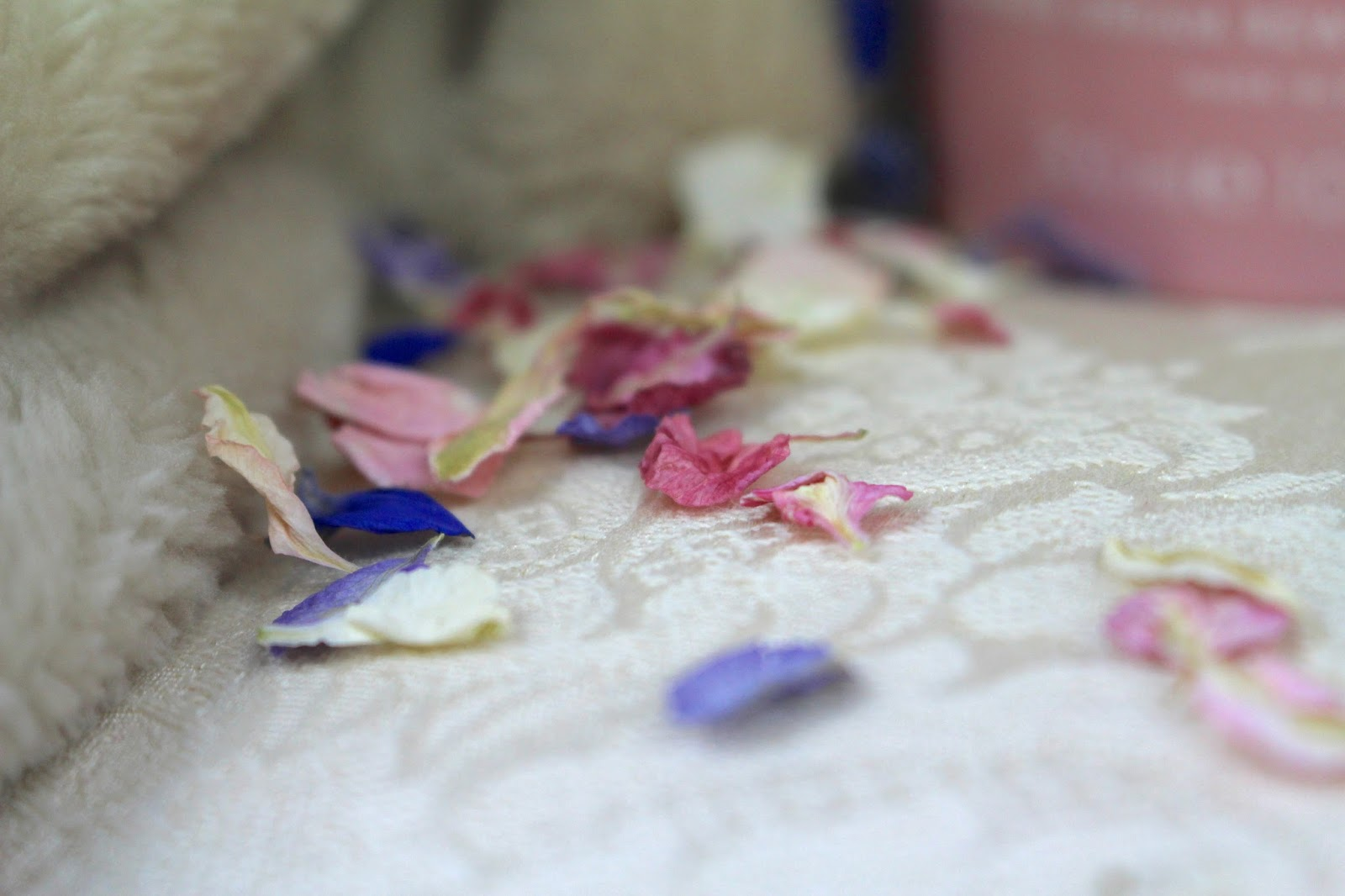 Natural Dry Petal Photography