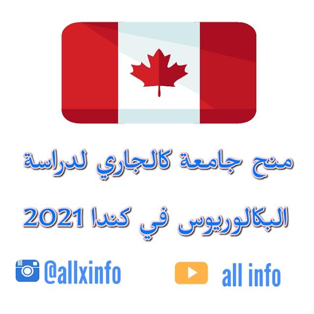 منح جامعة كالجاري لدراسة البكالوريوس في كندا 2021