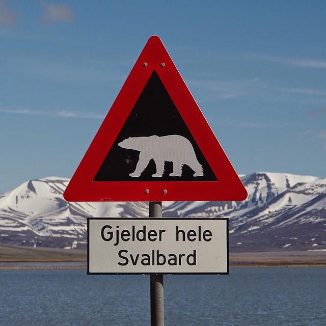 Isole Svalbard - Foto Balou46