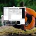 Alcatel Optus X Start OT-5033T Unlock | Mở Mạng