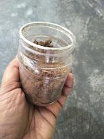 Fermented ground dry fish