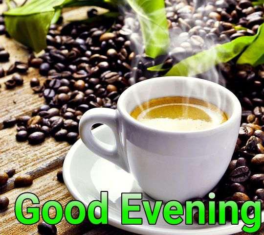 Good evening Tea party