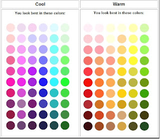 Cool Skin Tone Sesuai Untuk Warna Seperti Lilac Biru Hijau Silver Grey Hitam Dan Putih Eventhough Adalah Colour Universal